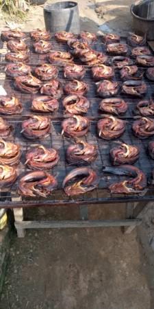 Maranathafood ventures
