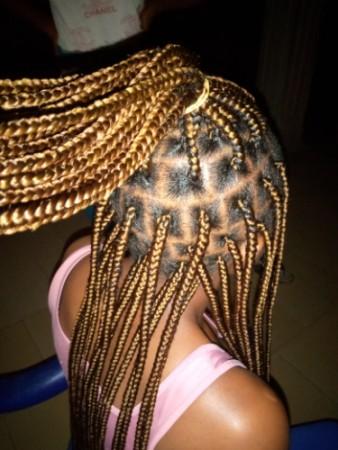 Mimy's hair world