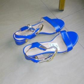 Blue High Heeled Female Shoe