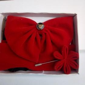 Arc Bow Tie