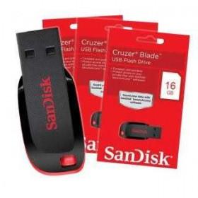 San Disk Flash Drive (16GB And 4GB)
