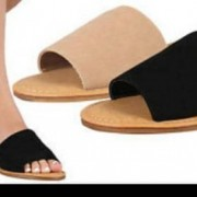 Slippers palm