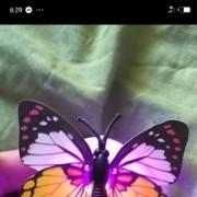 Luminous butterfly