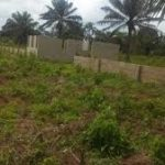 Land for rent in Ukpoba