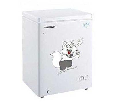 Skyrun Refrigerator price list
