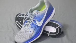 Nike Air Zoom Pegasus Pair x