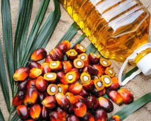 current price of palm oil in Nigeria