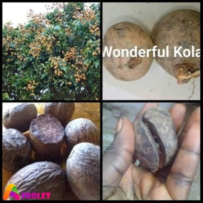 health benefit of wonderful kola