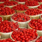 Village Market  Tomatoes