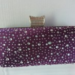 Sparkle fashion store  Clutch Purse